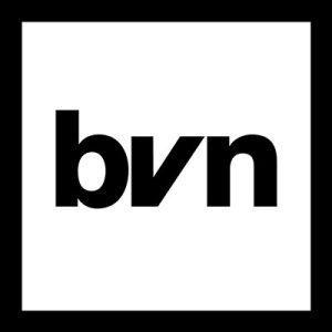 Black Voice News